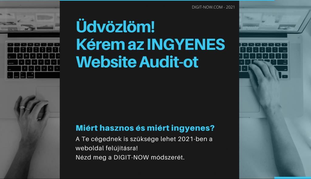 ingyenes website audit
